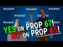 California voters: YES on Prop 67—and NO on Prop 65—for a plastic-free ocean!
